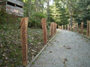 Strid Wood pathway